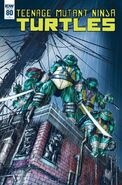 TMNT -80 Retailer Incentive Cover by Tadd Galusha
