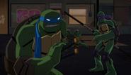 Bvstmnt 44 - turtles fighting