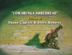 Cowabunga shredhead.jpg