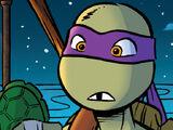 Donatello (Amazing Adventures)