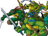 Ninja Turtles (2003 TV series)