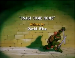 Usagi Come Home Title Card.png