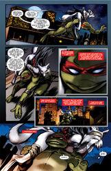 Raphael 1 TheGroup 019