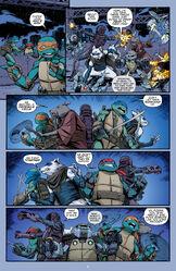 Teenage Mutant Ninja Turtles 048-021