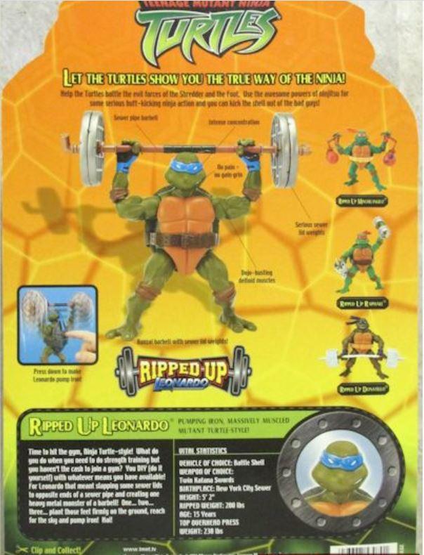 Ripped-Up Leonardo (2004 action figure)