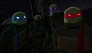 Bvstmnt 24 - turtles shadow