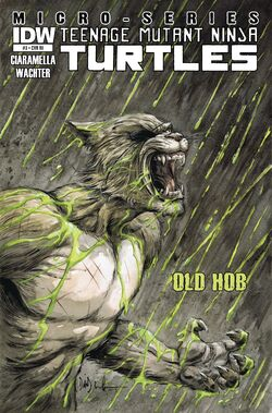 IDW-One-shot Old-Hob Cover-RI.jpg
