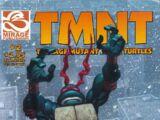 Teenage Mutant Ninja Turtles issue 2 (volume 4)