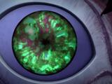 Eyes of the Chimera