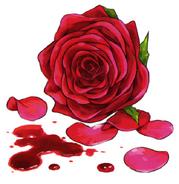Anna Sprengel's rose and blood