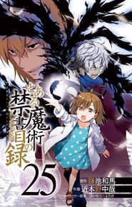 Toaru Majutsu no Index Manga v25 Title Page