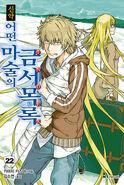 Shinyaku Toaru Majutsu no Index Light Novel v22 Korean cover