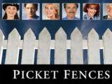 Picket Fences (1992)