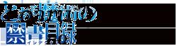 Toaru Majutsu no Index Wiki