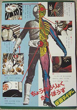 Anatomy/Kamen Rider Series