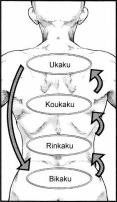 Ubicación del kakuhou
