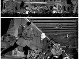 Operación Exterminio de la Familia Tsukiyama
