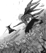Sasaki's kakuja develops