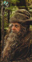 Radagast Lo Hobbit (2012).jpg