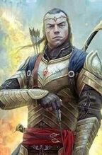 Signore dei Noldor.jpg