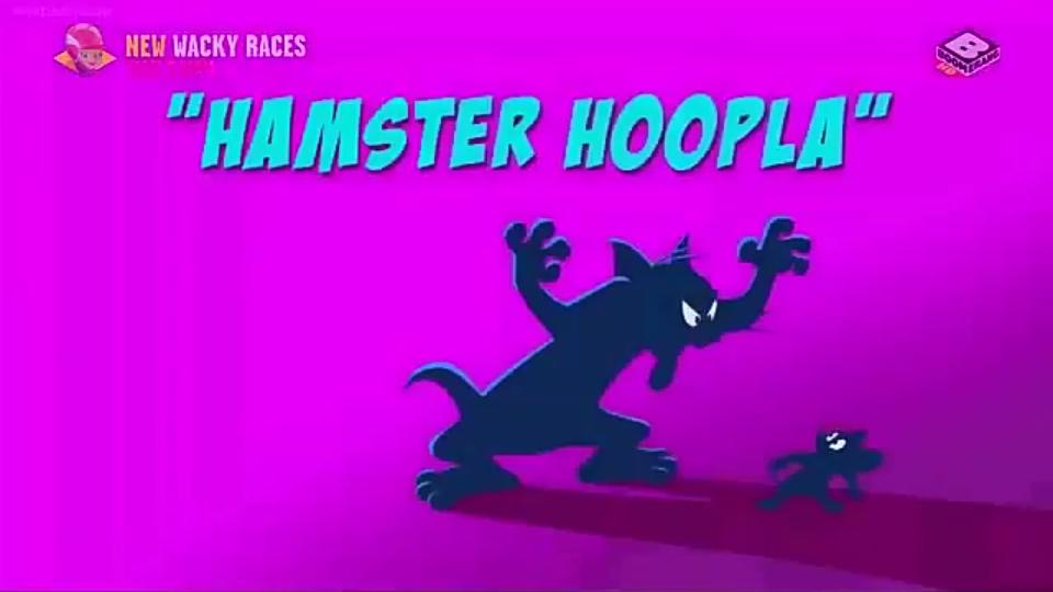 Hamster Hoopla