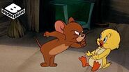 Little Quacker Tom and Jerry Boomerang Official