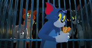 Tom And Jerry 2021 Pound 4