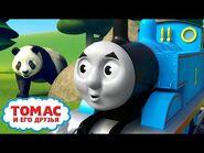 Обучающие серии от Томаса - Томас и Перси узнают, что едят животные - Детские мультики
