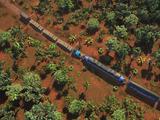 Экспресс-линия Густаво