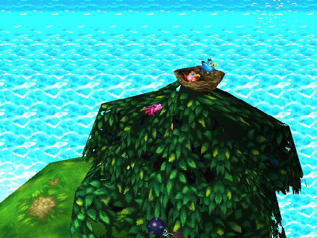 Bird's Nest.png
