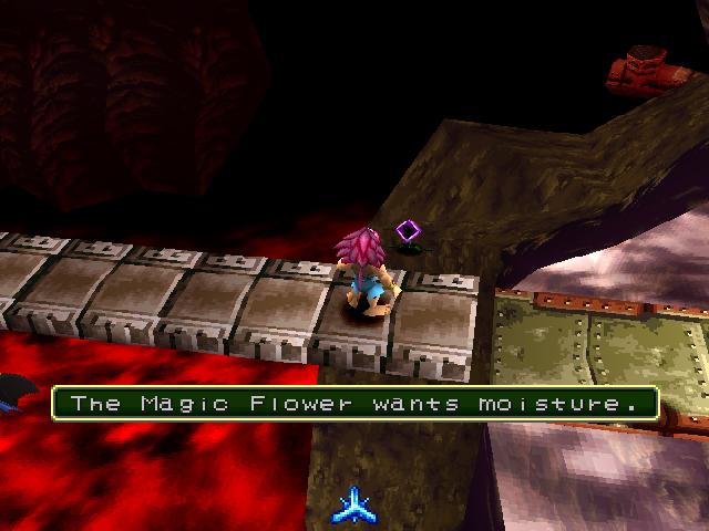 Examining Magic Flower.png