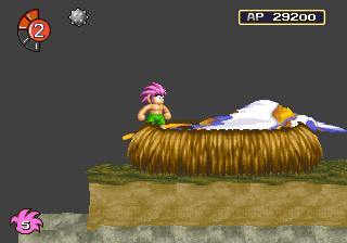 Phoenix's Nest