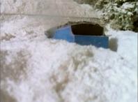 Snow59