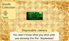 DisposableCamera.JPG