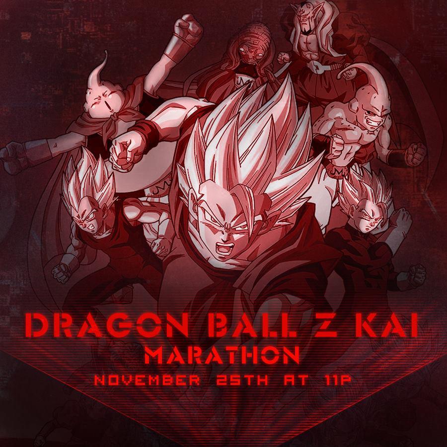 DBZ Kai Marathon (November 2017)