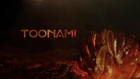 Toonami Logo Vindication Variant