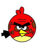 Big Brother Bird
