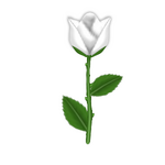 Stinking Rose.png