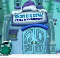 Snow Big Deal Crisis Management.png