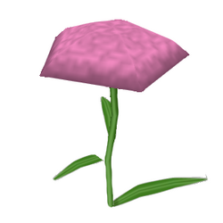 What-in Carnation.png