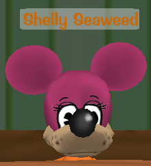 Shelly Seaweed.png