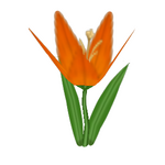 Tiger Lily.png