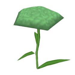 Model Carnation.png