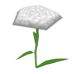 Side Carnation.png