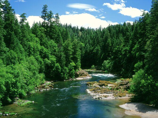 River 001.jpg