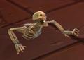 Skeletal Torso1.png