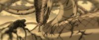 Serpiente Madre vs Cuatro Bestia (Anime)