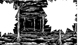 Bosque foretal.png