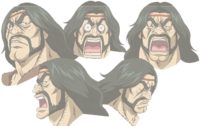 Zonge Expressions.png