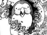 Billion Bird